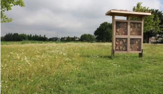 100% biodiversiteit: wens versus realiteit