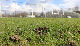 Actueel: zijn wormen schadelijk voor onze sportvelden?