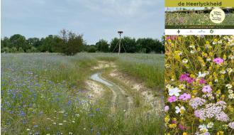 Project de Heerlyckheid: 'de natuur een handje helpen voor meer biodiversiteit'