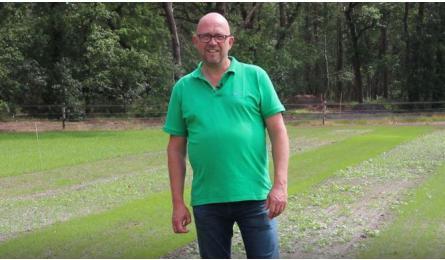 Volg de groei van veldbloemen- en kruidenmengsels